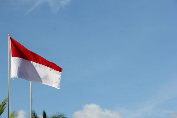Peran UKM,UMKM,Bisnis Online dan Start Up bagi Indonesia