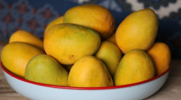 fin - buah untuk ibu hamil - 5 - mangga