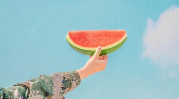 fin - buah untuk ibu hamil - 6 - semangka