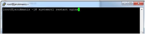 artikel 2 - langkah 6 - setting wp tanpa cpanel - 3 - setting nginx dan php-fpm