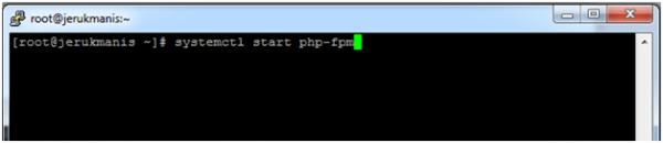 artikel 2 - setting wp tanpa cpanel - 2 - install php-fpm